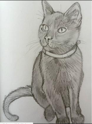lewis-sketch